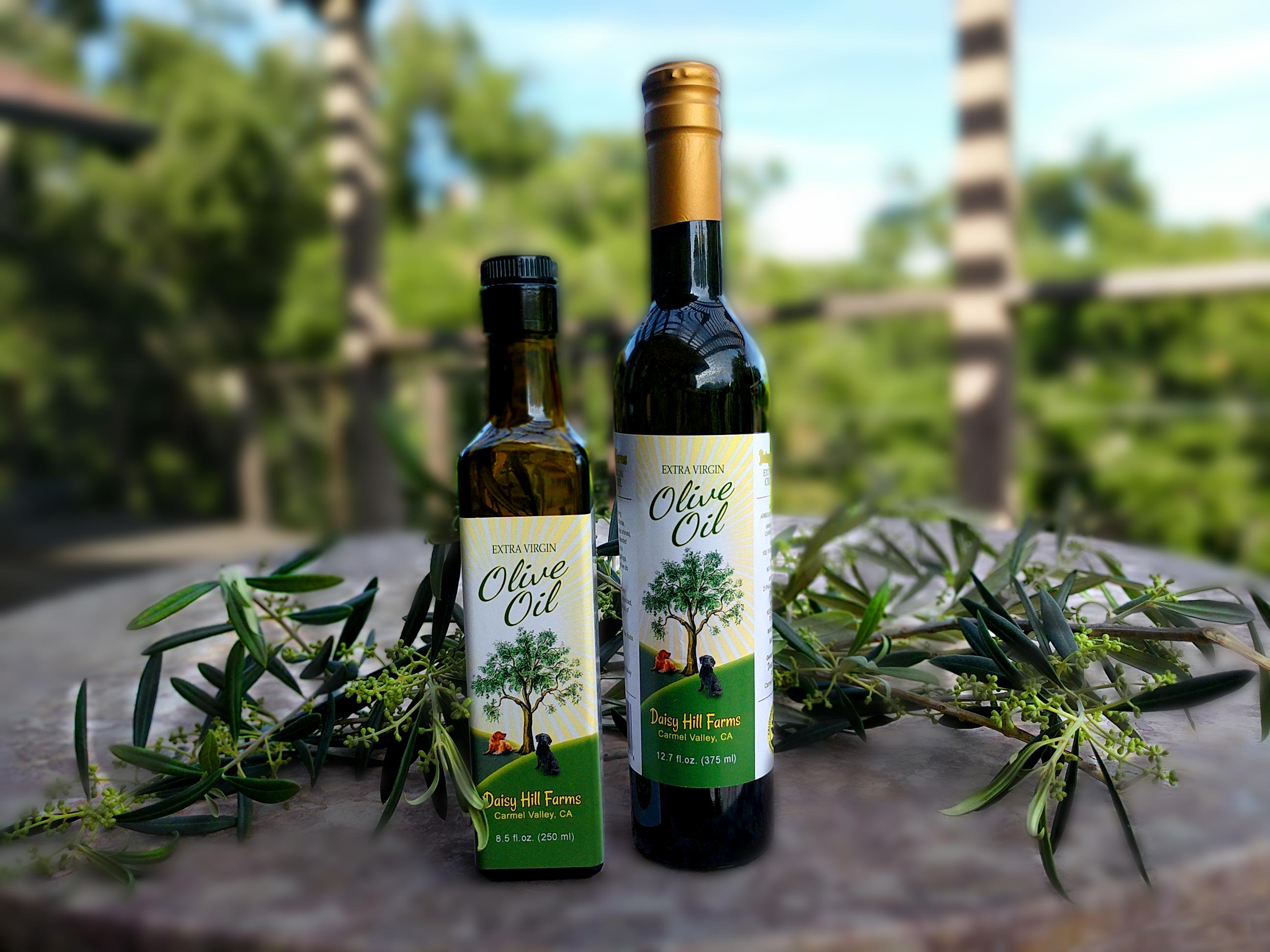 Daisy Hill Farms Olive Oil for Sale