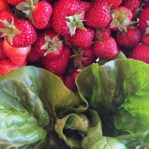 May Strawberries + Lettuce